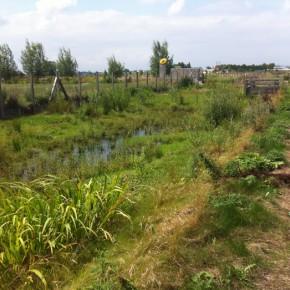 Plan de gestion écologique, ZAC Verte Rue, Bailleul